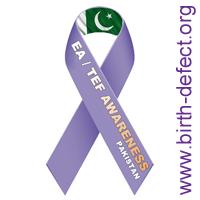 EA-TEF Pakistan